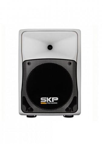 SK-508i